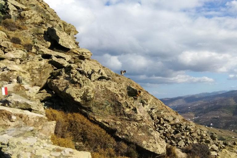 Walking-path-to-Rochari-beach-Tinos-island-Cyclades-Greece