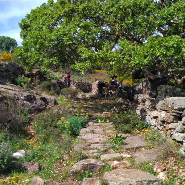 Self-Guided-Naxos-tour-Way-to-Moni